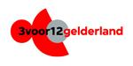 3 voor 12 Gelderland crowdfunding